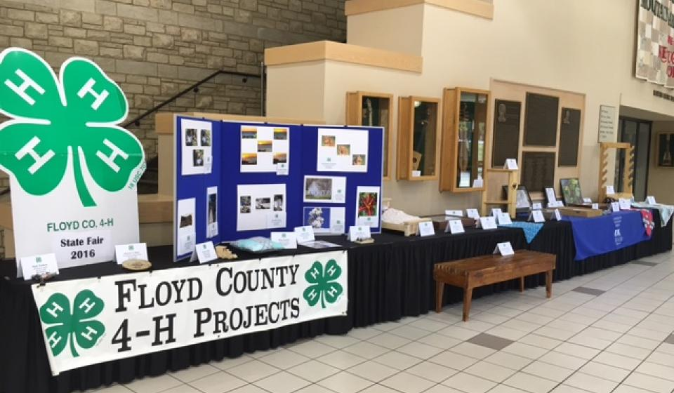 2016 State Fair 4-H Projects