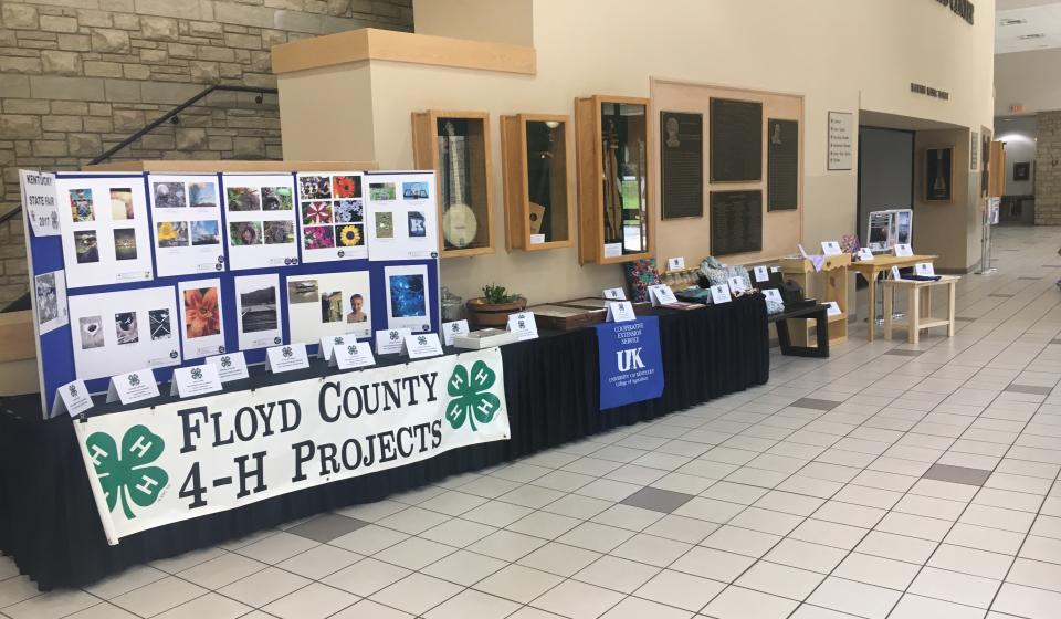 4-H State Fair Projects